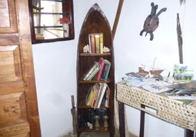 Log-boat shelf with books